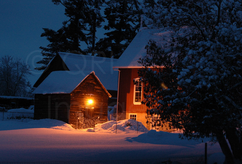 QRI Images: Solitary light on a wintery night