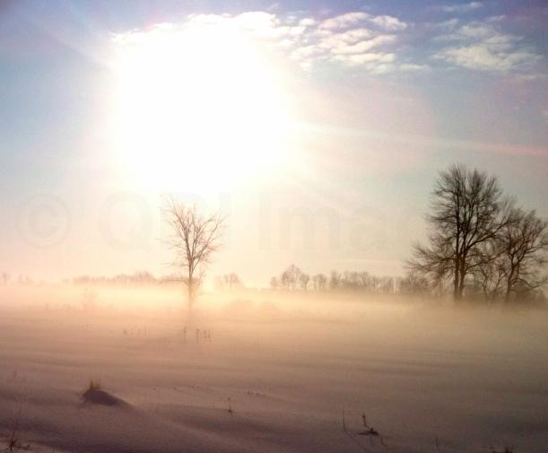 Sun blazing through the fog (QRI - iPhone capture)