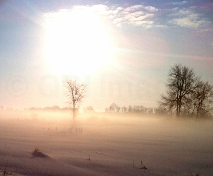 Sun blazing through the fog (QRI - iPhone capture)